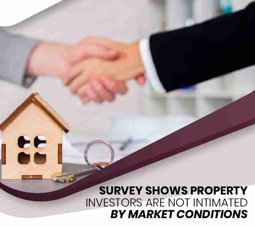 survey shows property investors are not intimated-01